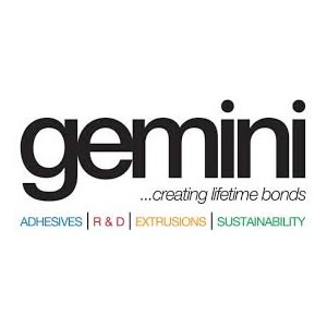 Gemini Franchise Logo