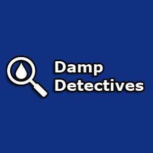 Damp Detective Franchise Logo